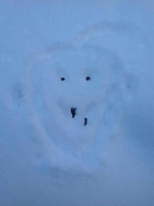 A Snow Face