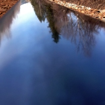 Reflection in the rail line