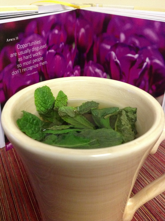 A new favorite - Mint tea